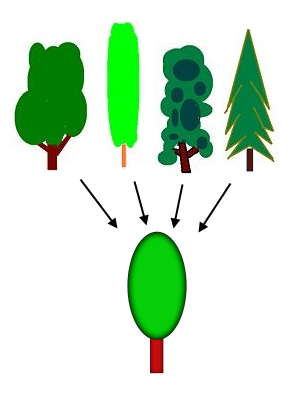 Different types of trees used to illustrate the process of generalization. The first row showcases different types of trees an each points to a generic tree in the second row,symbolizing conceptualization/generalization.